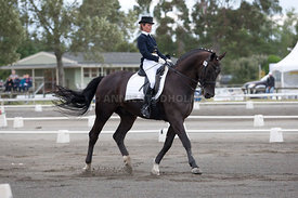 SI_Dressage_Champs_260114_015