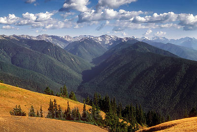 A huge expanse of forested wilderness looking south into Olympic National Park from Hurricane Ridge, Washington