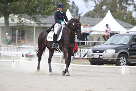 SI_Festival_of_Dressage_310115_Level_6_7_MFS_0634