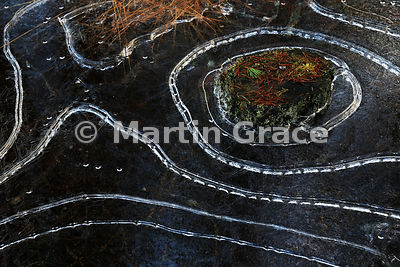 Ice Contours, Drumguish - shortlisted in the Natural Abstract Category of the Scottish Nature Photography Awards 2016