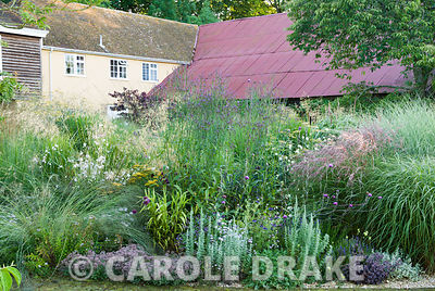Central circular bed planted with a mix of grasses and herbaceous perennials including Verbena macdougalii, Cirsium tuberosum, Sedum 'Ruby Glow', Stipa gigantea, Miscanthus 'Yakushima Dwarf', artemisia and Nigella 'Papillon Midnight'. Broughton Buildings, Broughton, nr Stockbridge, Hants, UK