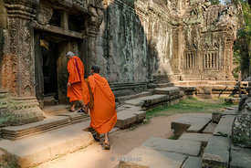 Monks at the Ta Prohm Temple in Siem Reap, Cambodia.