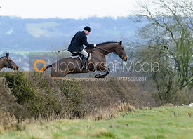 jumping a hedge above Wilson's covert