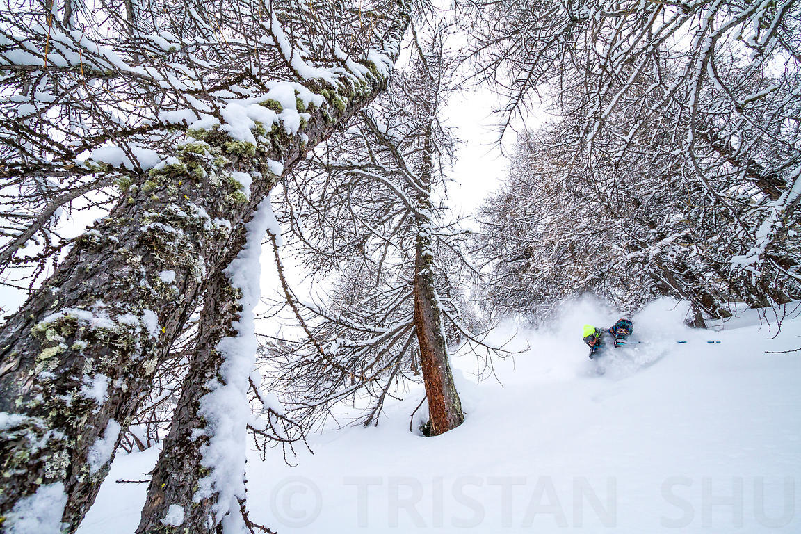 Powder in the trees with PG Conrady