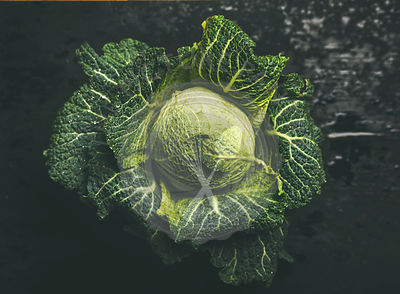 Raw fresh green cabbage over dark background, top view,