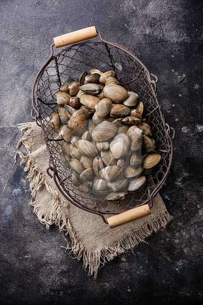 Raw fresh clams vongole seashells in metal basket