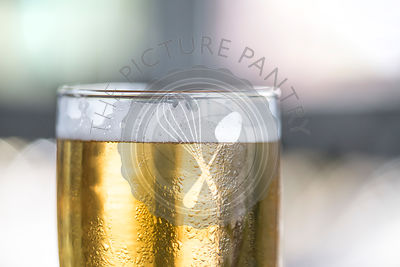Macro detail shot of beer glass with foam lacing detail. Natural light on a sunny day.