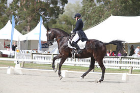 SI_Festival_of_Dressage_310115_Level_6_7_MFS_0622