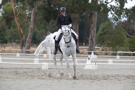 SI_Festival_of_Dressage_300115_Level_6_NCF_0188