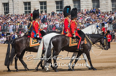 Trooping_the_Colour_8737