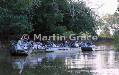 Tourist boat scrum watching Jaguars (Panthera onca) Hunter (female) and Hero (male) mating, Black Channel, River Cuiabá, Mato Grosso, Brazil: total of 57 people in 10 boats