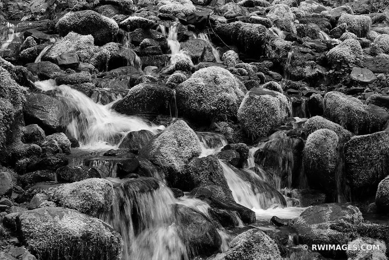 MOSSY ROCKS FOREST STREAM SOL DUC FALLS TRAIL OLYMPIC NATIONAL PARK WASHINGTON PACIFIC NORTHWEST FOREST BLACK AND WHITE