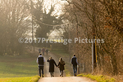Family on a Winter Walk in the Countryside