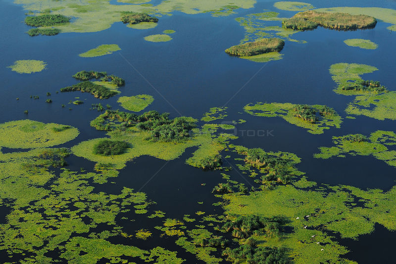 Aerial view over the Danube delta wetlands rewilding area, Romania June 2012