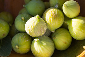 freshly picked green figs in green slubbed  earthenware bowl in late afternoon garden sun
