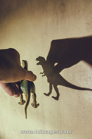 shadow of a dinosaur toy