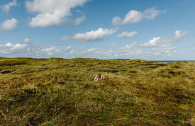 Danish woman and girl together in the dunes in Thy 2