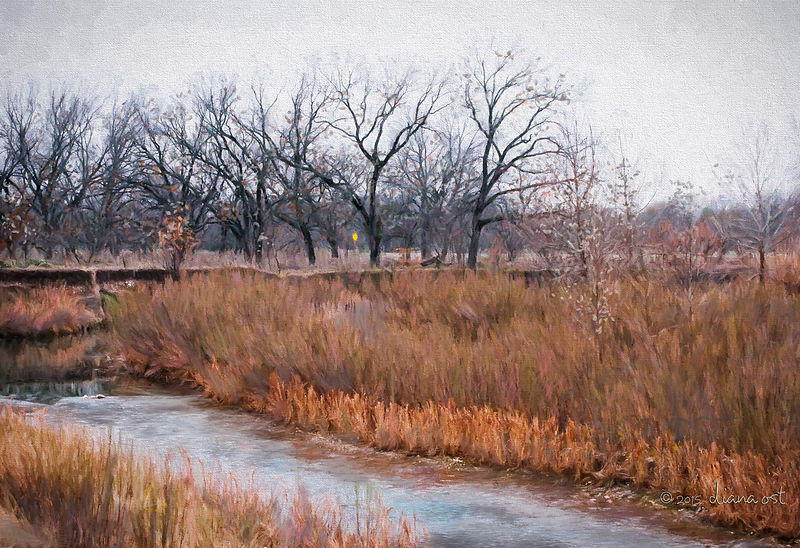 Winter-on-the-South-Llano-River-Painting