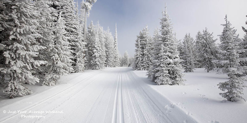 Chief Joseph XC ski trails