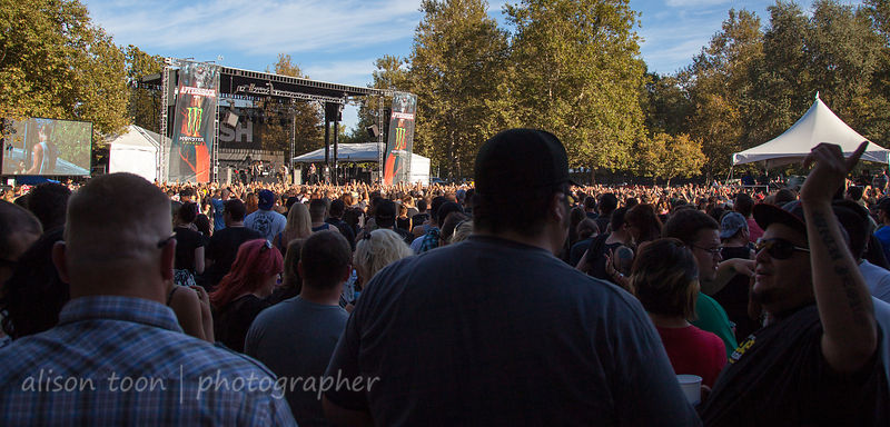 Bush, live at Aftershock 2012