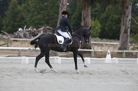 SI_Festival_of_Dressage_310115_Level_5_Champ_0812