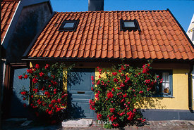 Cottage in the village of Visby
