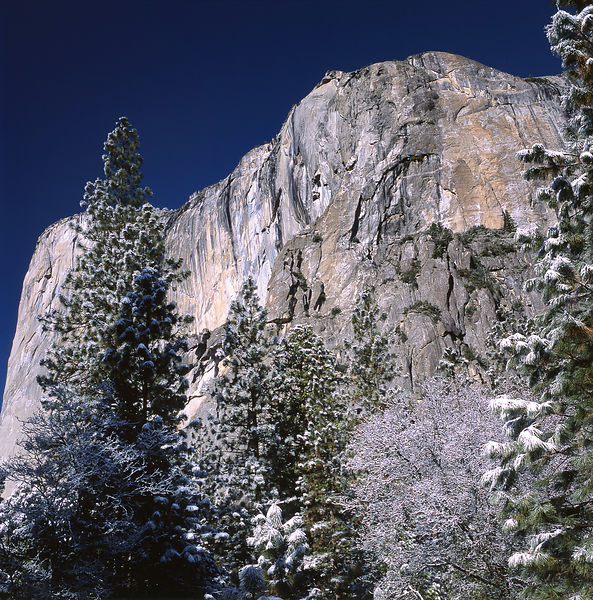 046-California_CA141081_Yosemite_Snow_Storm_017_Preview