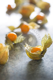 large physalis or cape gooseberry group with delicate papery husk on green marble