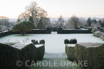 View from Temple of the Four Winds down to croquet lawn framed with yew hedging and the distinctive form of Pinus pinea, the stone or umbrella pine, Dorset countryside beyond. Kingston Maurward Gardens, Dorchester. Dorset, UK