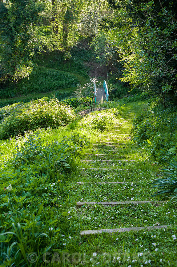 Steps lead down to the bridge across a stream in the valley garden. Brilley Court Farm, Whitney-on-Wye, Herefordshire, UK