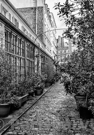 Cour Saint-Pierre Paris 17th