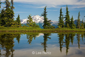 Glacier Peak viewed from a tarn in Mt. Forgotten Meadows, Mt. Baker-Snoqualmie National Forest, Cascade Mountains, Washington, USA, August, 2008_WA_4589