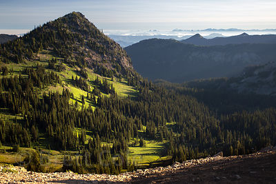 Wilderness in the Sunrise area, Mount Rainier National Park, Washington