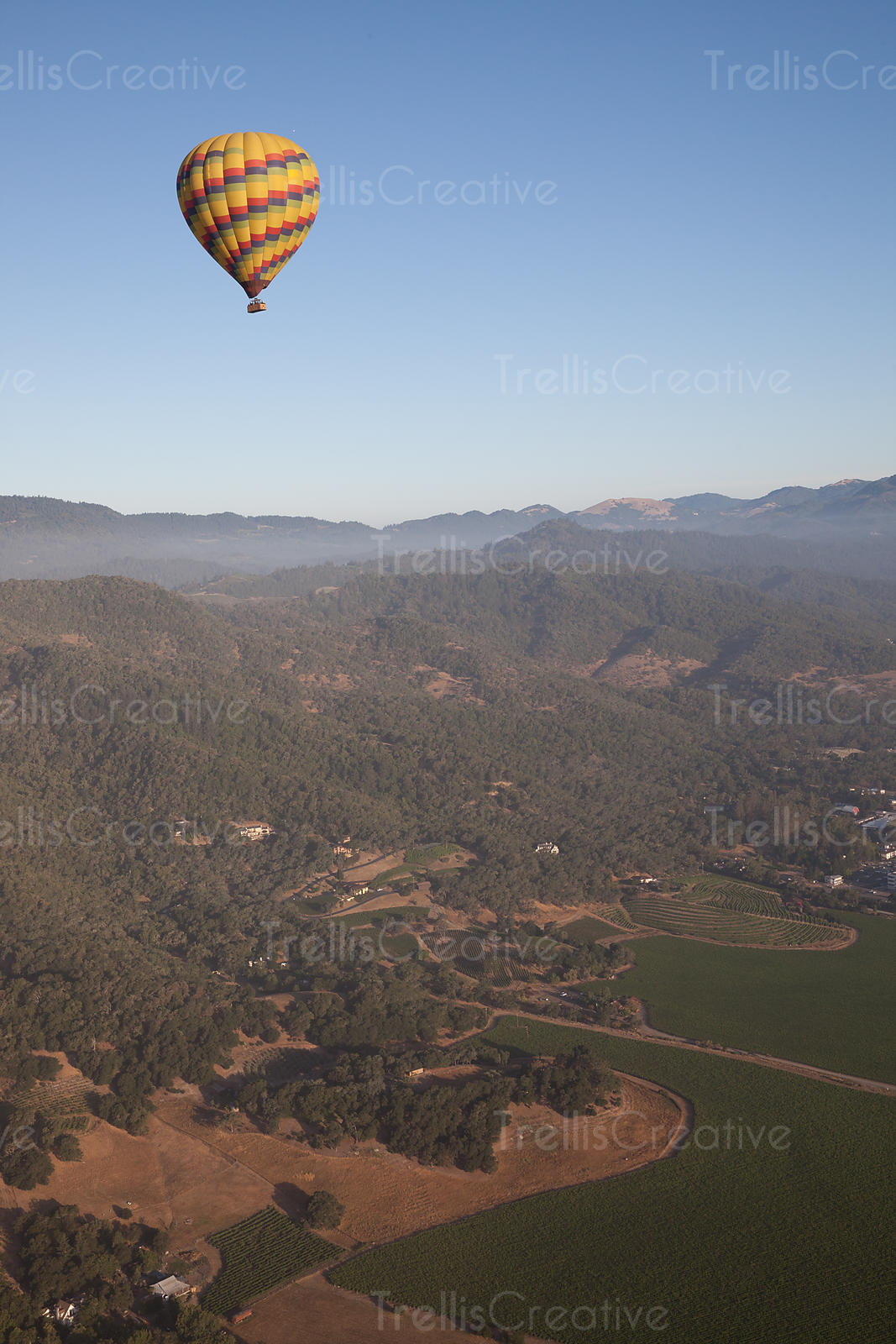 Hot air balloon drifting over vineyards in Napa Valley, California