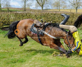 Greg Walters falls at the last hedge - Harborough Ride 2014