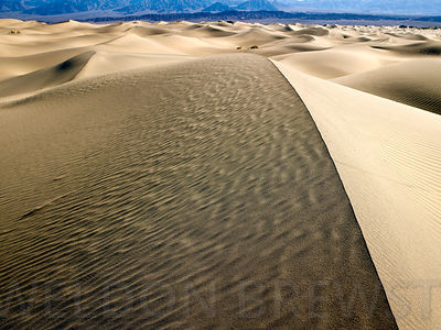 Death_Valley_May2010_185