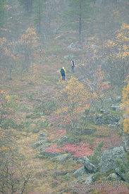 Backpacker and autumn fog