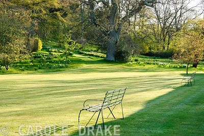Shadows cast by early morning sun are cast across lawn of the pool terrace with informal area of garden studded with spring flowers beyond. Milton Lodge, Wells, Somerset, UK