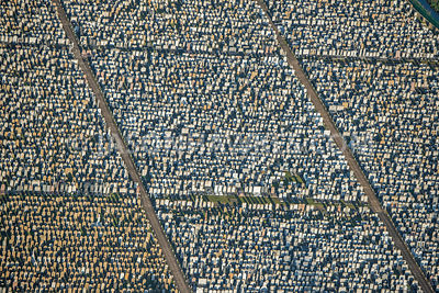 Aerial view of North London, close up of headstones in cemetery.