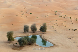 A falaj, a water management system at Empty Quarter dessert.