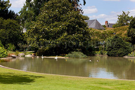 Photos photo du jardin des plantes a angers - Jardin interieur du lac angers ...