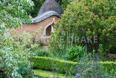 View towards Pond Garden surrounded by cob wall, toipped with tiles and thatch, across box hedging, past silvery Eleagnus 'Quicksilver', Stipa gigantea and Euphorbia mellifera. Caervallack Farm, St Martin, Helston, Cornwall, UK