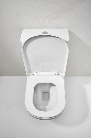Toilet bowl in view of top with open seat cover
