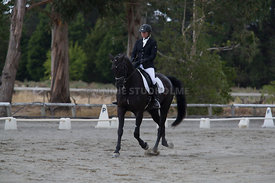 SI_Festival_of_Dressage_300115_Level_3_NCF_0089
