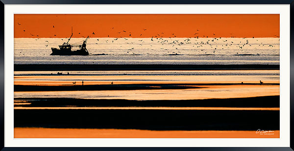Fishing sunset berck100x50 © 2018 Olivier Caenen, tous droits reserves