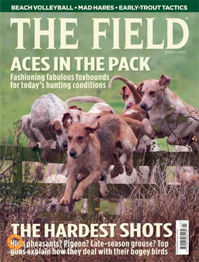 The Field front cover photograph, March 2012 - Cottesmore Hounds jumping a fence