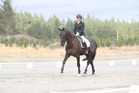 SI_Festival_of_Dressage_310115_Level_1_Champ_0677