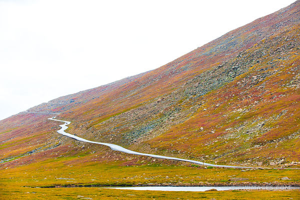 FALL TUNDRA COLORS MOUNT EVANS ROAD SCENIC BYWAY ROAD COLORADO ROCKIES AUTUMN