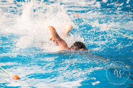 Waihi_Swimming_Sports_2017-49