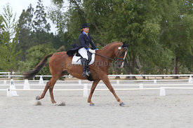 SI_Festival_of_Dressage_310115_Level_8_MFS_1142